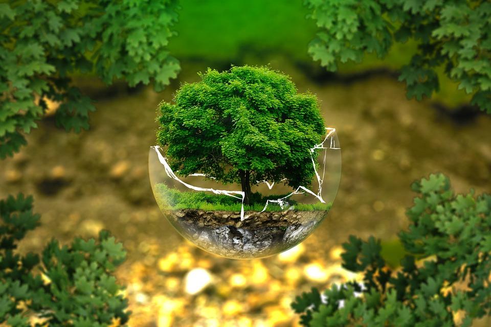 Upaya Pelestarian Lingkungan Dan Analisis Mengenai Dampak Lingkungan